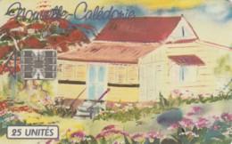 PHONE CARDS NUOVA CALEDONIA (E49.1.3 - Nuova Caledonia