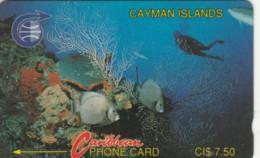 PHONE CARDS CAYMAN ISLANDS (E49.3.2 - Isole Caiman
