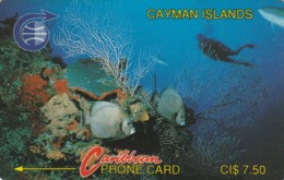 PHONE CARDS CAYMAN ISLANDS (E49.3.3 - Isole Caiman