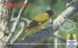 PHONE CARDS SRY LANKA (E49.6.6 - Sri Lanka (Ceylon)