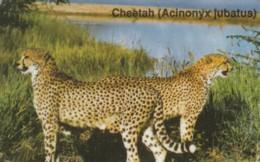 PHONE CARDS NAMIBIA (E49.7.6 - Namibie