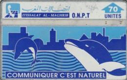 PHONE CARDS MAROCCO (E49.33.2 - Maroc