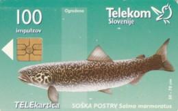 PHONE CARDS SLOVENIA (E49.37.6 - Slovenië