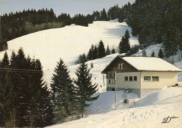 Gerardmer - La Mauselaine - Gerardmer