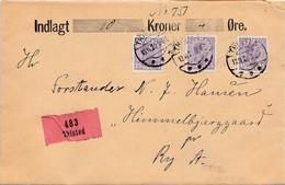 Dänemark: 1920: Wertbrief Thisted Nach Ry - Dänemark