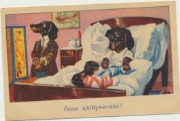 75-89 Dog Birthday Estonia - Honden