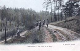 52 - Haute Marne -  CHAUMONT -    La Vallée De La Suize - Chaumont