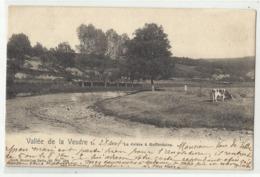 Vallée De La Vesdre - La Rivière à GOFFONTAINE (Pepinster) 1907 - Pepinster