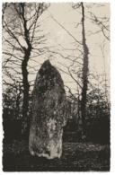 CPA PHOTO       87        BESSINES           MENHIR DES FICHADES - Dolmen & Menhirs