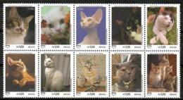 Brazil 2018 Brasil / Cats MNH Gatos Katzen Chats / Cu14732  41-49 - Gatos Domésticos