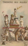 GUERRE 1914/18 -  Triomphe Des Alliés,carte Humoristique Avec Des Chiens. - Patriottisch
