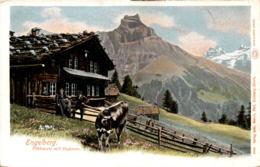 Engelberg - Flühmatt Mit Hahnen (2022) - OW Obwalden