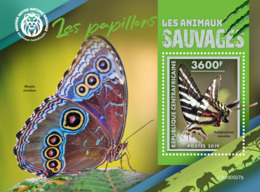 Central Africa 2019  Fauna Butterflies S201908 - República Centroafricana