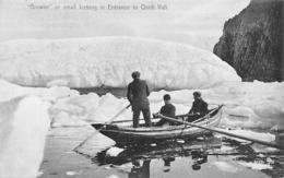 "Groenland: Ou Terre-Neuve :   ""Growler"" Or Small Iceberg In Entance To Quidi Vidi   (voir Scan) - Groenlandia"