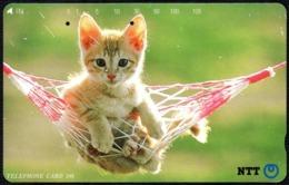 CATS - JAPAN - NTT -  TELEPHONE CARD 105 - KITTEN ON A HAMMOCK - 1992 - USED - Gatti