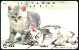 CATS - JAPAN - NTT -  TELEPHONE CARD 105 - TWO KITTENS - 1995 - USED - Gatti