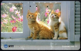 CATS - JAPAN - NTT -  TELEPHONE CARD 105 - TWO KITTENS NEAR A WINDOW - 1992 - USED - Gatti