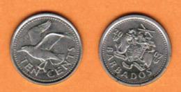 BARBADOS  10 CENTS 2007 (KM # 12a) #5456 - Barbados (Barbuda)