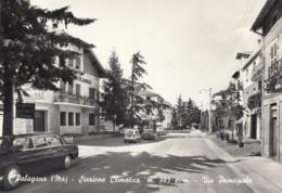 PALAGANO-MODENA-VIA PRINCIPALE-CARTOLINA VERA FOTOGRAFRIA VIAGGIATA NEL 1965 - Modena