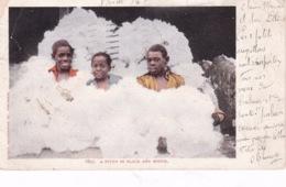 ETATS UNIS(TYPE) COTON - Black Americana