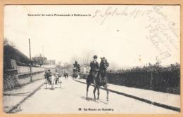 CPA Souvenir De Notre Promenade A Robinson, La Route De Malabry, Gel. 1916 - Francia