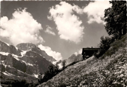 Landschaft Am Bergli-Engelberg (86) * 15. 6. 1951 - OW Obwalden