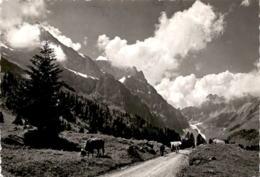 Am Weg Nach Arnialp (48) * 5. 9. 1963 - OW Obwalden