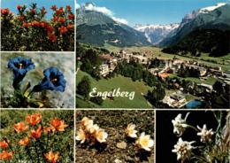 Engelberg - 6 Bilder (18969) - OW Obwalden