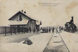Russie  -  Soronitch  La Gare  -  Soronitch  La Station - Chemin De Fer