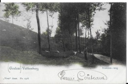 1 Ansichtkaart 1902 -  Geulem Valkenberg - Brakken-weg - 2318 - Valkenburg