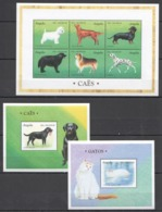 A080 ANGOLA FAUNA PETS CATS & DOGS GATOS CAES !!! 1KB+2BL MNH - Honden