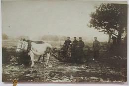 Weißrußland, Raum Smorgon, Soldaten Hund Schlitten, Feldpost 3.RD 1915 (39049) - War 1914-18