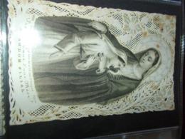 B736  Santino Madonna Macchioline Umido - Images Religieuses