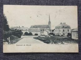 LUXEMBOURG  * 1907 Souvenir De Bissen - Cartes Postales