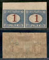 REGNO - Segnatasse - 1890 - 1 Lira (27g) - Coppia Non Dentellata Bordo Foglio - Gomma Originale - Diena (560+) - Sellos