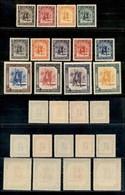OCCUPAZIONI STRANIERE DELLE COLONIE - CIRENAICA AMMINISTRAZIONE AUTONOMA - 1950 - Cavaliere (1/13) - Serie Completa - Go - Francobolli
