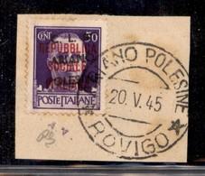 C.L.N. - ARIANO POLESINE - 1945 - 50 Cent (Errani 29r Varietà R) Usato Su Frammento - Soprastampa Obliqua + N Senza Punt - Sellos