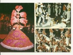 SALGUEIRO / PREMIERE ECOLE DE SAMBA De RIO - DANSE BRESIL - Dans