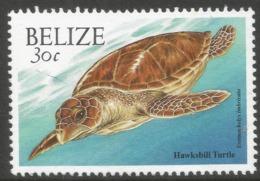 Belize. 2000 Wildlife. 30c MNH. SG 1258 - Belize (1973-...)