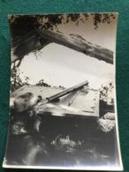Grande Photo D'un Poilu Observateur à La Longue Vue 18 X 13 Cm 1914-18 - 1914-18