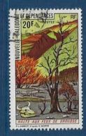 """Nle-Caledonie YT 391 """" Protection De La Nature """" 1975 Oblitéré - Neukaledonien"""