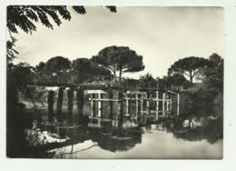 RAVENNA - LA PINETA - VIAGGIATA FG - Ravenna
