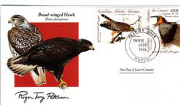 FDC COMOROS  Birds  /  Oiseaux, COMORES, Lettre De Première Jour,  BUTEO PLATYPTERUS - Vögel