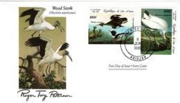 FDC  IVORY COAST  Birds  /  Oiseaux, CÔTE D`IVOIRE, Lettre De Première Jour,  MYCTERIA AMERICANA - Storchenvögel
