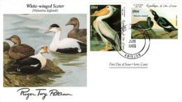 FDC  IVORY COAST  Birds  /  Oiseaux, CÔTE D`IVOIRE, Lettre De Première Jour,  MELANITTA DEGLANDI - Vögel