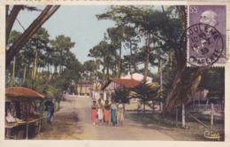 CPA 17 @ RONCE LES BAINS - Avenue De La Cèpe En 1938 - Timbre 55 C - Léon Gambetta - Y&T 378 - France