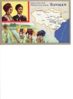 COLONIES FRANCAISES TONKIN - Cartes Postales