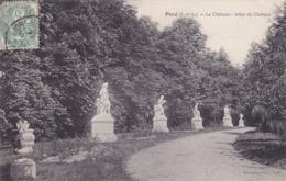CPA 37 @ POCE - Le CHATEAU - Une Allée - Les Statues Humaines - France