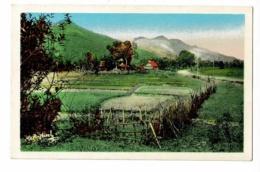 410 - Laos - Xieng-Khouang - Village De Banthuong - Pas Circulé, Couleur - Laos