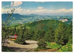 BRD - AK : Schwarzwald Im Gebiet Der Schwarzwald-Hochstraße Von 1977 - Sonstige